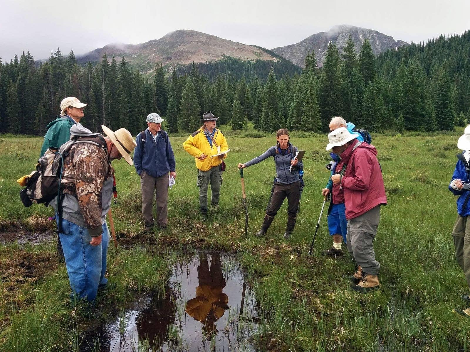 Colorado watershed restoration project