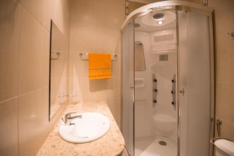 curved shower door_Deyan Stoev_shutterstock