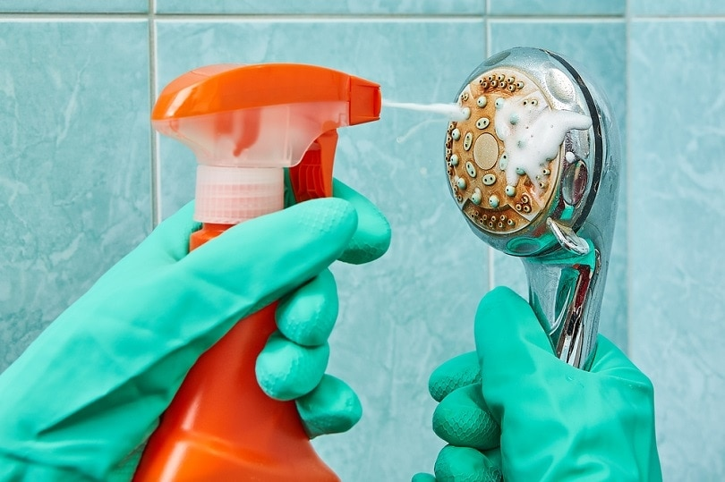 green rubber protective gloves wash the head of the shower_Grigvovan_shutterstock