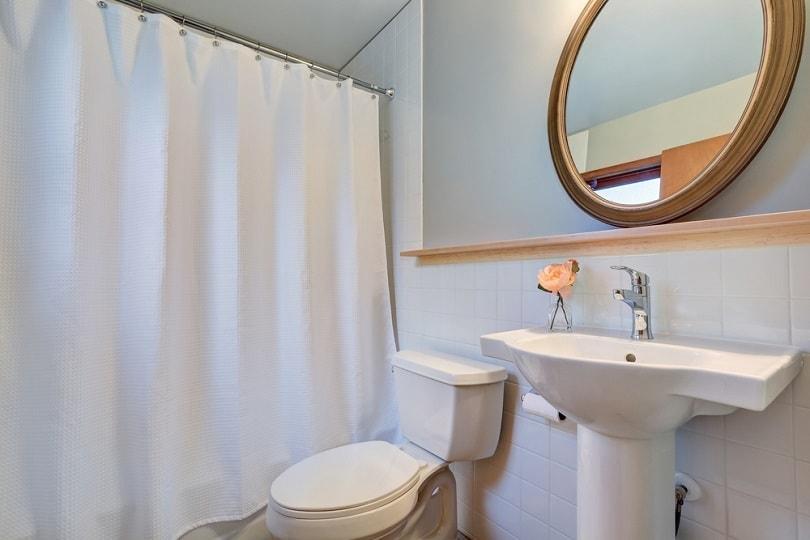 shower curtain_Artazum_shutterstock