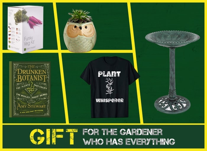 25 Gift Ideas For The Gardener Who Has, What To Get A Gardener Who Has Everything